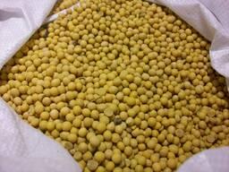 Соя бобы (Не ГМО, Полножировая, протеин не менее 38%) Украина, отгрузим в течении 5 дней