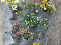 Стенка для растений (вертикальная грядка)