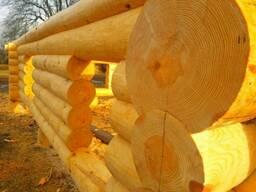 Строительство деревянного дома бани беседки под ключ