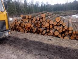 Сухостой дрова