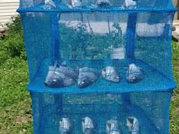 Сушилка универсальная для рыбы, грибов и ягод 40*40*55
