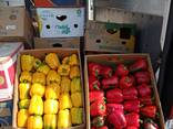 Свежие Капуста, Свекла , морковь , томат , огурец, лук, перец , баклажан, голубика - фото 1