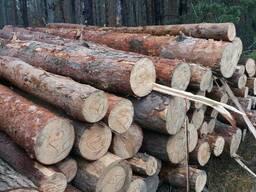 Сырьё древесное технологическое