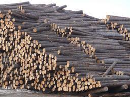 Технологическое сырье, тарное бревно, балансы, дрова. Хвойных и лиственных пород