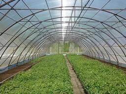 Теплицы промышленные и фермерские из поликарбоната