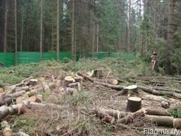 Удаление пней деревьев Расчистка участка