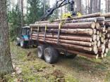 Услуги лесовоза - фото 2