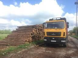 Услуги лесовоза МАЗ 6501А8 3230