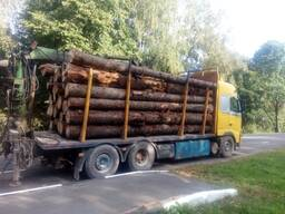 Услуги лесовоза Volvo с манипулятором по РБ