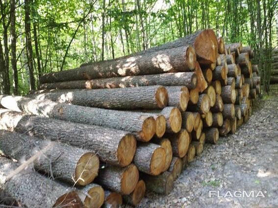 Услуги по распиловке леса кругляка