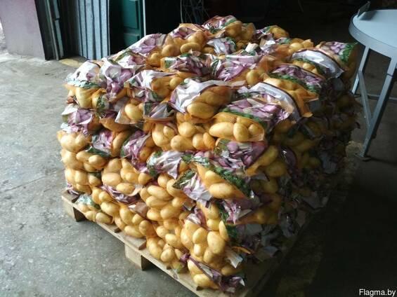 Услуги по упаковке, мойке и фасовке овощей