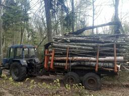 Услуги трелевки и валки леса
