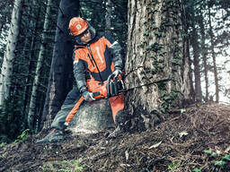 Валка деревьев Гомель