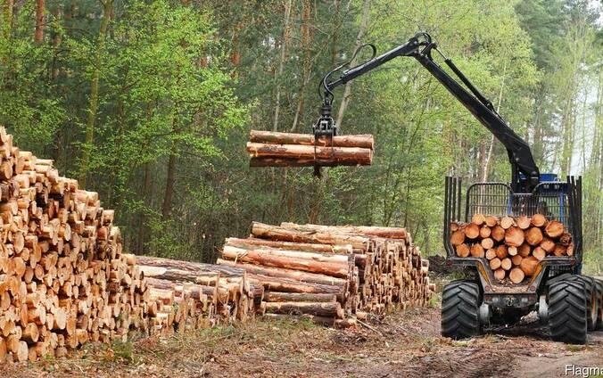Вывозка заготовка древесины