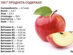 Яблоко (сорт «Конфетное»)