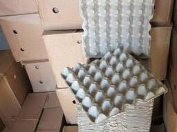 Ящик для яйца куриного