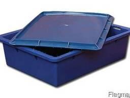 Ящик (лоток) с крышкой, пластиковый, пищевой, р-р внутр.- 46