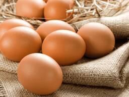 Яйцо куриное пищевое столовое - фото 1
