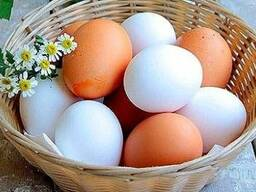 "Яйцо куриное (С0, С1, Д0, Д1) от ОАО Птицефабрика ""Рассвет"""