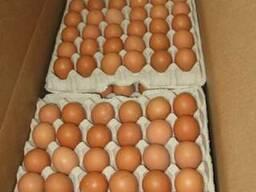 Яйцо куриное С1бел, С1цв (десяток)