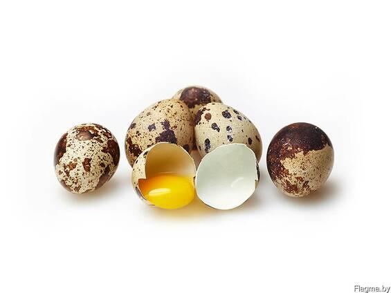 Яйцо перепелиное диетическое