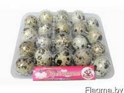 Яйцо перепелиное (в упак. по 20 шт. )
