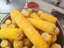 Замороженные початки сладкой кукурузы производства РБ