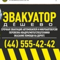 Зевакова Светлана Вячеславовна